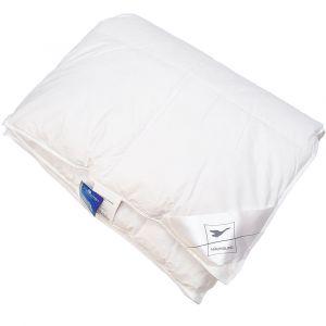 Winter Daunendecke Kassettenbett Komfort Warm 4x6 von Häussling